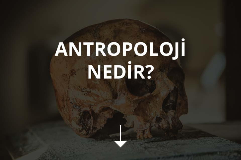 Antropoloji Nedir?