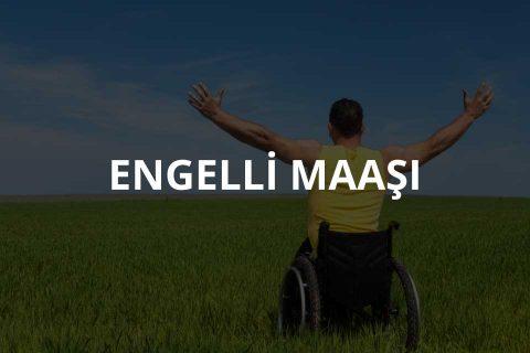 Engelli Maaşı