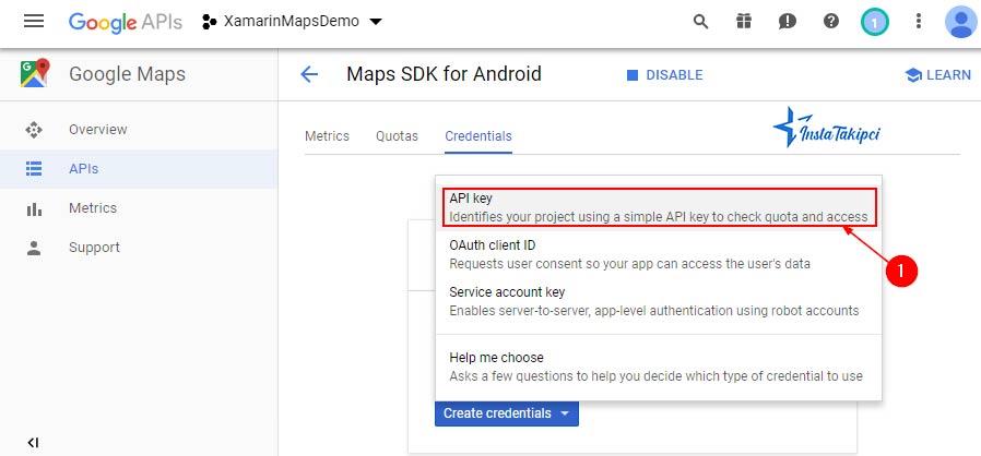 google maps api key alma