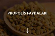Propolis Faydaları