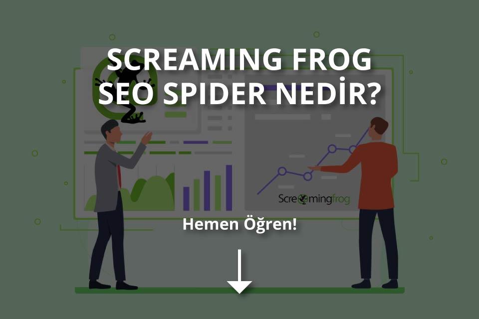 Screaming Frog Nedir?