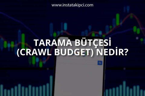 Tarama Bütçesi (Crawl Budget) Nedir?