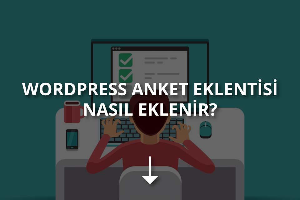 WordPress Anket Eklentisi