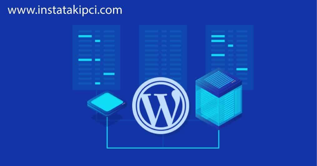 wordpress hosting kullanım