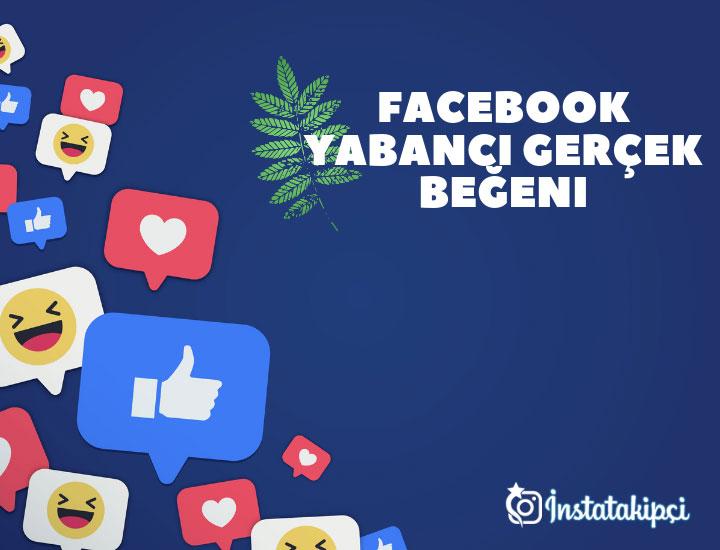 facebook fotoğraf beğeni