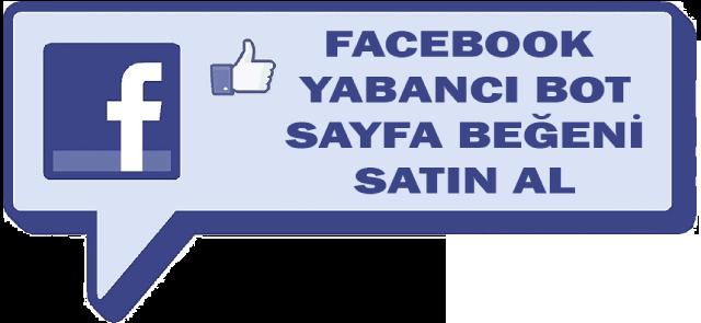 Facebook Yabancı Bot Sayfa Beğeni Al